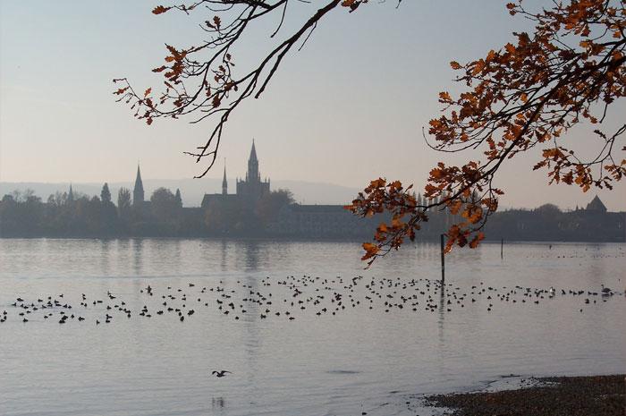 Wengert Bestattungen Konstanz Über uns Herbst